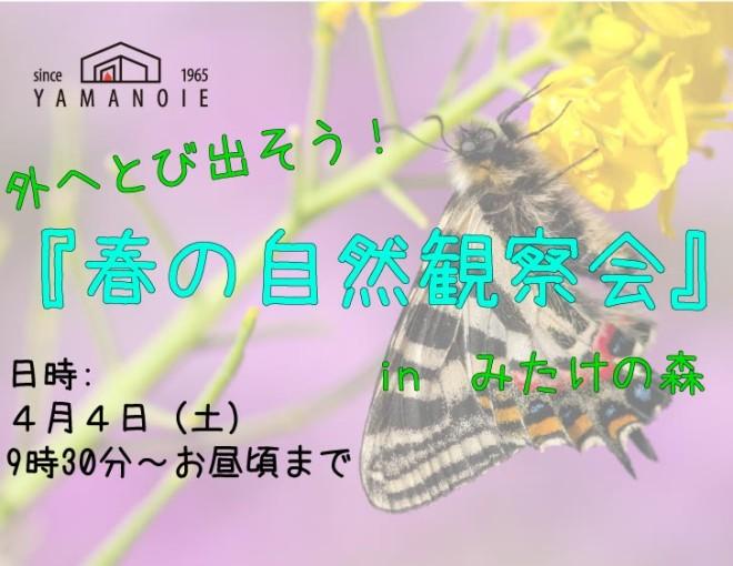春の自然観察会-01