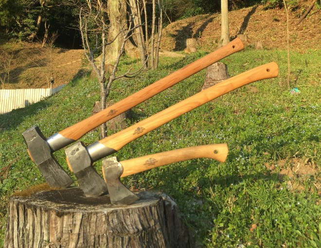 斧が切り株に刺さっている様子